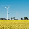 Biopaliwa i odnawialne źródła energii – nowy kierunek studiów podyplomowych na WNoZ