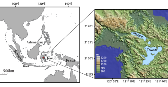 """Szczecin Geoscience Seminar: """"Past & Present: Changes in climate and species diversity in diatom populations within a paleo-core from Lake Towuti, Indonesia"""""""
